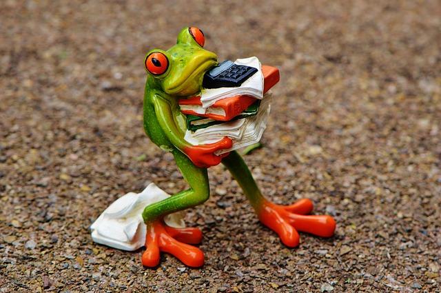 zaneprázdněná žába